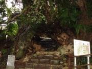 生樹の御門